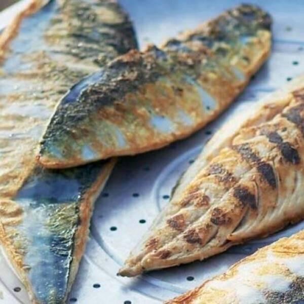 Mackerel Fillet