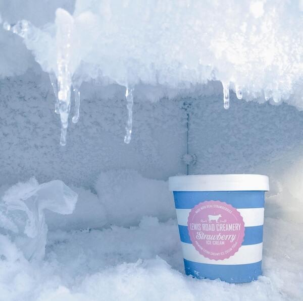 Freshly Frozen